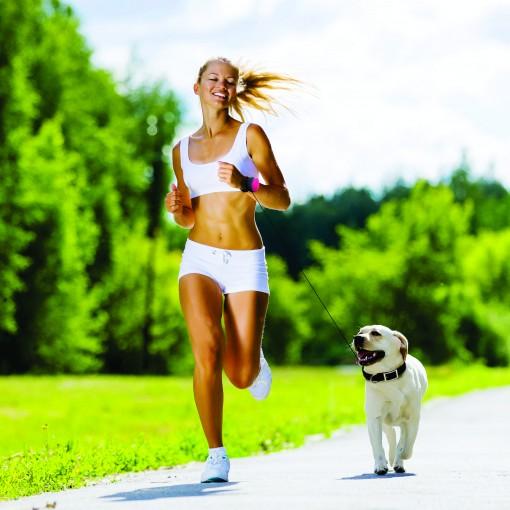 Ako správne behať so psíkom  3cb699199eb